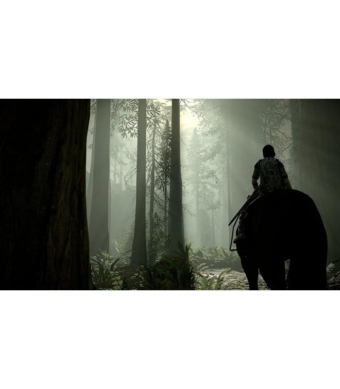 بازی Shadow Of The Colossus - پلی استیشن 4